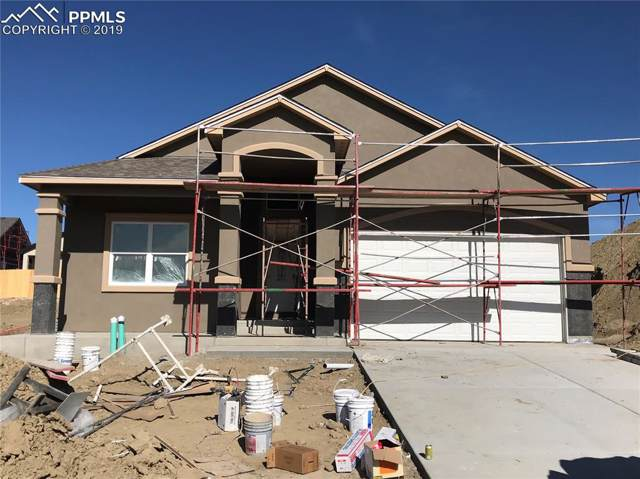 7171 Bigtooth Maple Drive, Colorado Springs, CO 80925 (#9079543) :: CC Signature Group