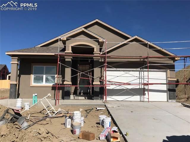 7171 Bigtooth Maple Drive, Colorado Springs, CO 80925 (#9079543) :: The Treasure Davis Team