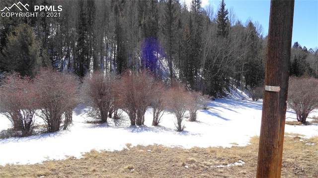 1673 May Queen Drive, Cripple Creek, CO 80813 (#9080289) :: 8z Real Estate