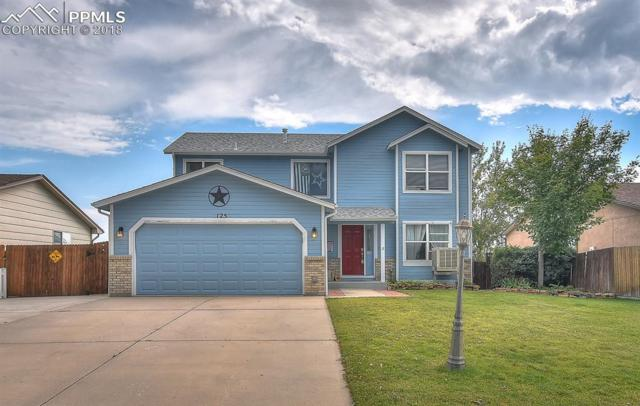 5125 Wilhelm Drive, Colorado Springs, CO 80911 (#9080988) :: Harling Real Estate