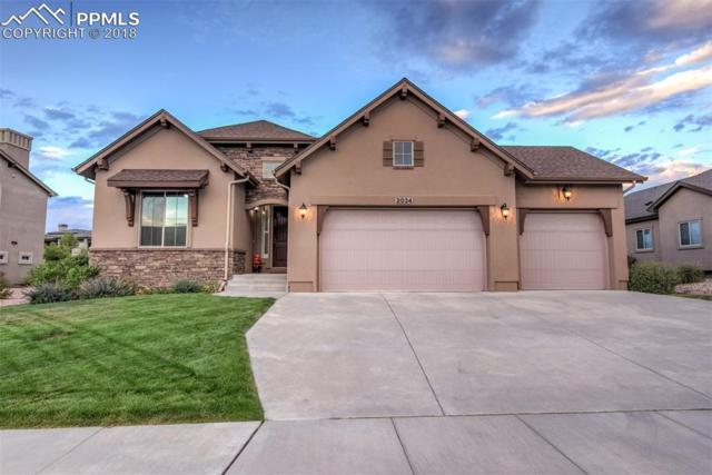 2034 Turnbull Drive, Colorado Springs, CO 80921 (#9081457) :: The Daniels Team