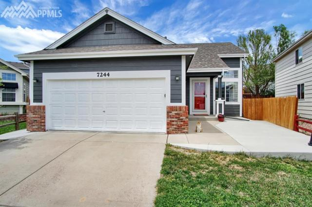 7244 Dandelion Court, Colorado Springs, CO 80922 (#9087762) :: Fisk Team, RE/MAX Properties, Inc.