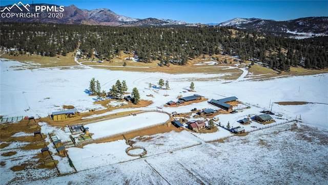 801 County Road 453 Road, Lake George, CO 80827 (#9088216) :: Jason Daniels & Associates at RE/MAX Millennium