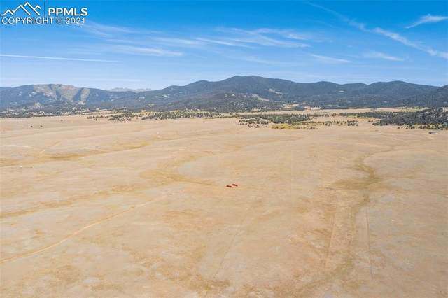 4250 Ute Trace Road, Hartsel, CO 80449 (#9090364) :: Tommy Daly Home Team
