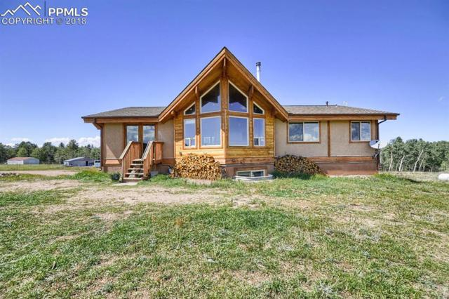 275 Dani Place, Divide, CO 80814 (#9091686) :: The Peak Properties Group