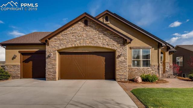 6051 Thurber Drive, Colorado Springs, CO 80924 (#9094402) :: The Daniels Team