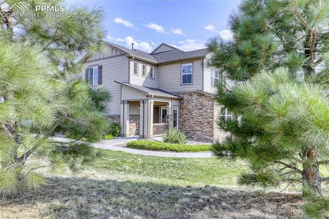 17146 Silent Forest Point, Monument, CO 80132 (#9095497) :: HomeSmart Realty Group