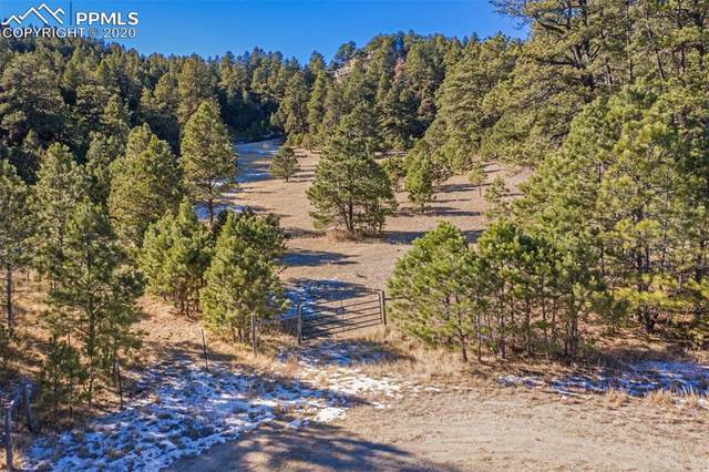 16490 Mesquite Road, Peyton, CO 80831 (#9100902) :: Action Team Realty