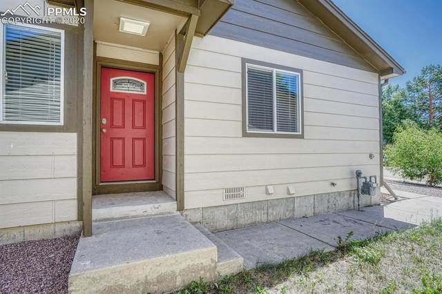 2460 Ambleside Drive, Colorado Springs, CO 80915 (#9105729) :: 8z Real Estate