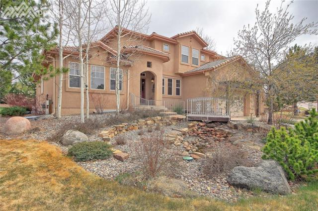 629 Saber Creek Drive, Monument, CO 80132 (#9107941) :: 8z Real Estate