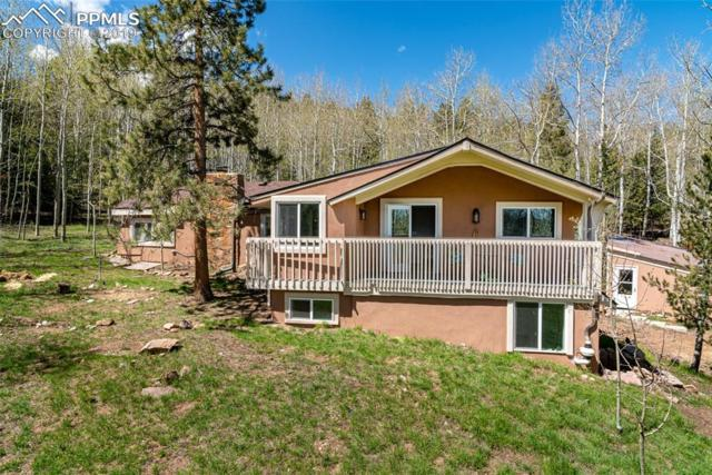 42 Lillooet Lane, Woodland Park, CO 80863 (#9108248) :: The Treasure Davis Team