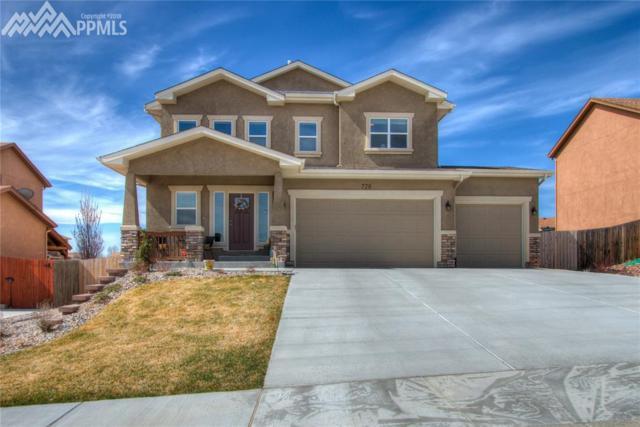 728 Seawell Drive, Colorado Springs, CO 80911 (#9116670) :: RE/MAX Advantage