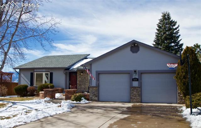 8276 Brigantine Drive, Colorado Springs, CO 80920 (#9119884) :: 8z Real Estate