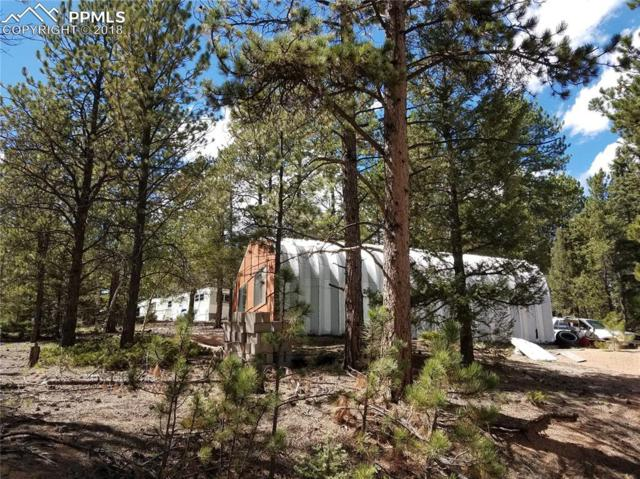 2683 Pathfinder Road, Florissant, CO 80816 (#9123499) :: Action Team Realty