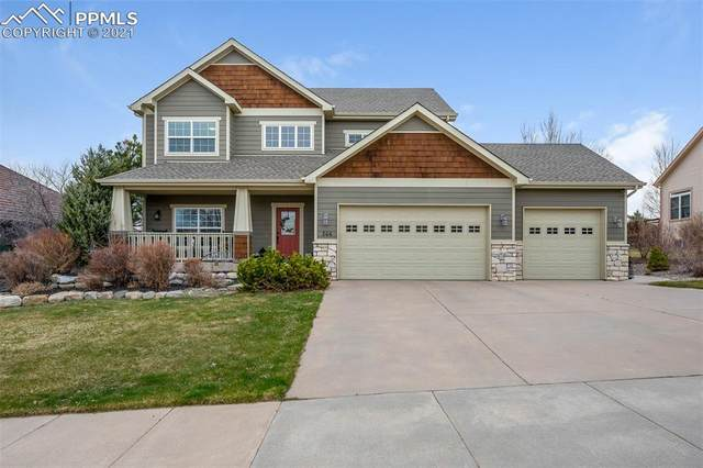 266 Saber Creek Drive, Monument, CO 80132 (#9125599) :: CC Signature Group