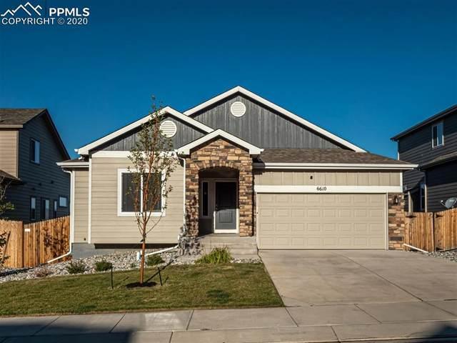 6610 Van Winkle Drive, Colorado Springs, CO 80923 (#9128149) :: Tommy Daly Home Team