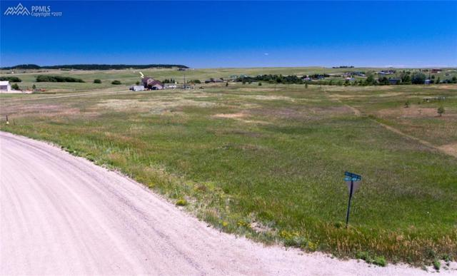 13385 Forest Green Drive, Elbert, CO 80106 (#9130279) :: 8z Real Estate