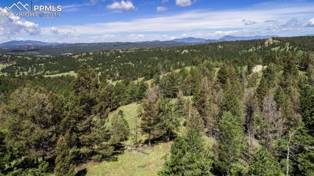 231 Hay Creek Road, Florissant, CO 80816 (#9134274) :: The Peak Properties Group