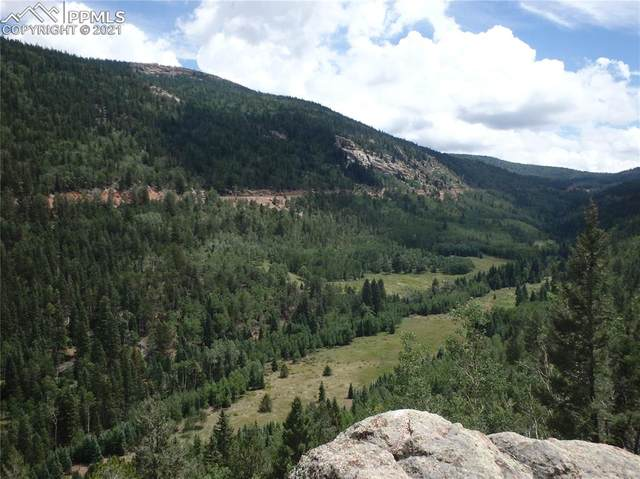 2902 County Road 61 Road, Cripple Creek, CO 80813 (#9136274) :: Fisk Team, eXp Realty