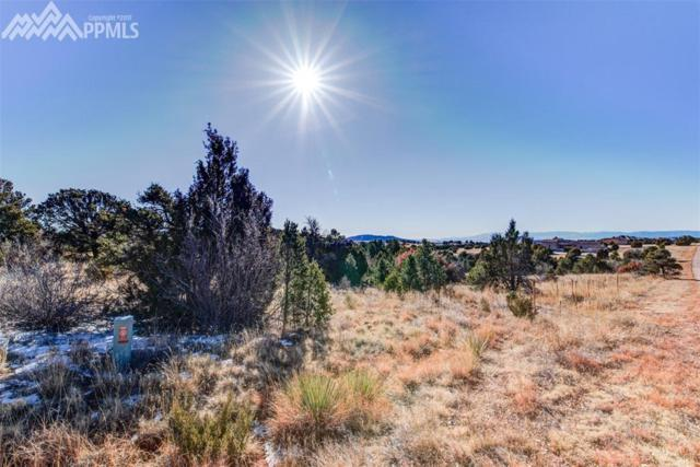 15632 Cala Rojo Drive, Colorado Springs, CO 80926 (#9136883) :: CC Signature Group