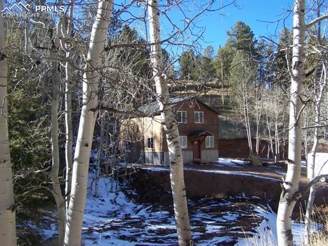 31 Rattler Way, Cripple Creek, CO 80813 (#9138508) :: The Treasure Davis Team