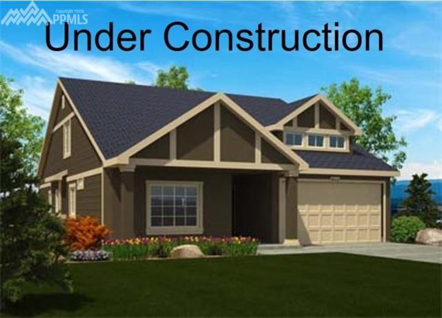 7896 Luminary Lane, Fountain, CO 80817 (#9139013) :: Venterra Real Estate LLC
