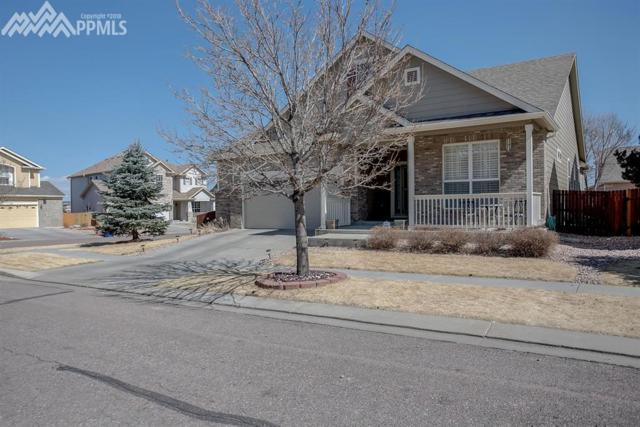 8987 Rockmont Terrace, Colorado Springs, CO 80920 (#9139690) :: The Treasure Davis Team