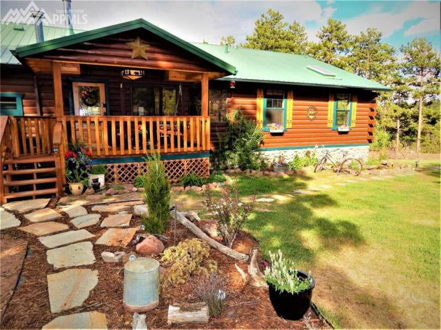 804 Sioux Road, Florissant, CO 80816 (#9142870) :: Fisk Team, RE/MAX Properties, Inc.