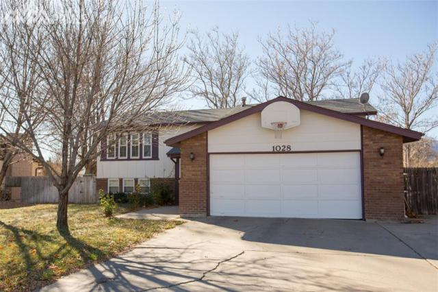 1028 Beech Avenue, Canon City, CO 81212 (#9144407) :: 8z Real Estate