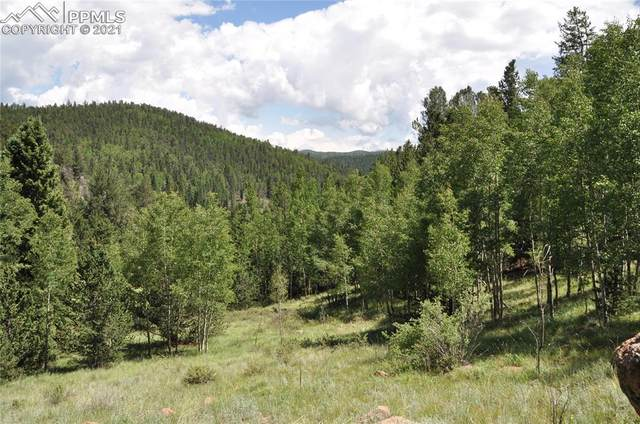 460 Brown Bear Drive, Cripple Creek, CO 80813 (#9144836) :: Tommy Daly Home Team