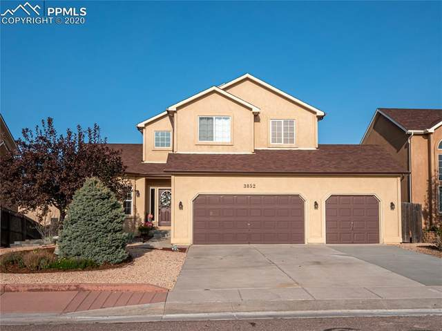 3852 Sonoran Drive, Colorado Springs, CO 80922 (#9145197) :: 8z Real Estate