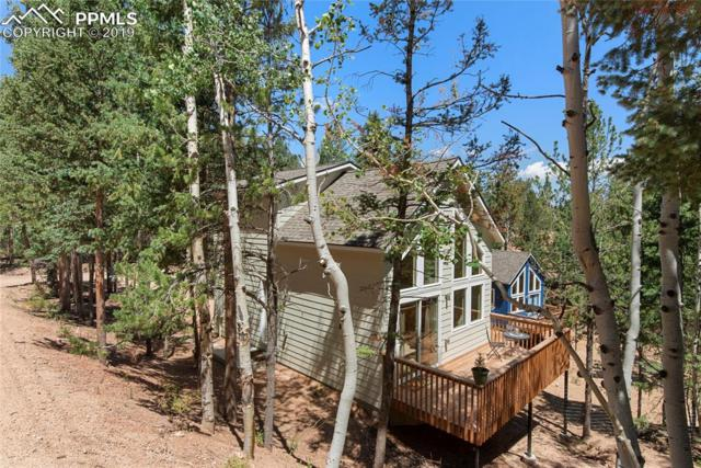 509 Wakanda Trail, Woodland Park, CO 80863 (#9150892) :: The Treasure Davis Team