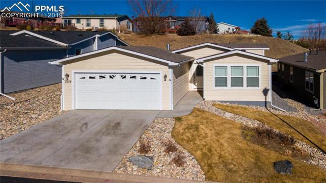 7654 Crested Jay Point, Colorado Springs, CO 80922 (#9154776) :: Fisk Team, RE/MAX Properties, Inc.