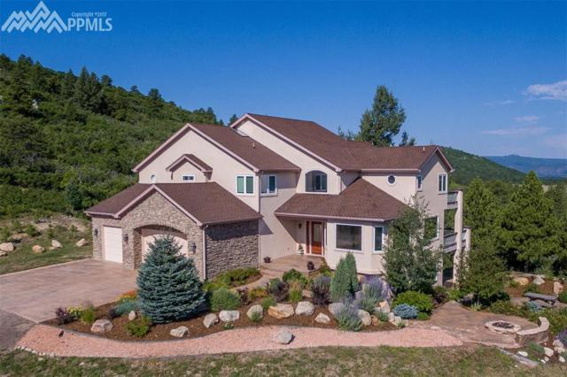 14232 Straight Path Lane, Larkspur, CO 80118 (#9157652) :: 8z Real Estate