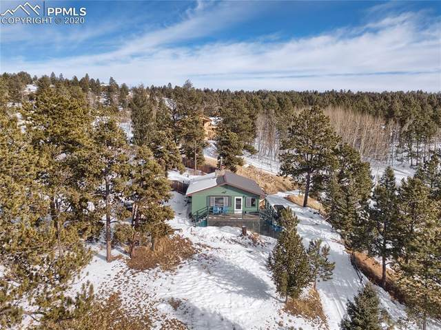 82 S Mountain Estates Road, Florissant, CO 80816 (#9159465) :: Tommy Daly Home Team