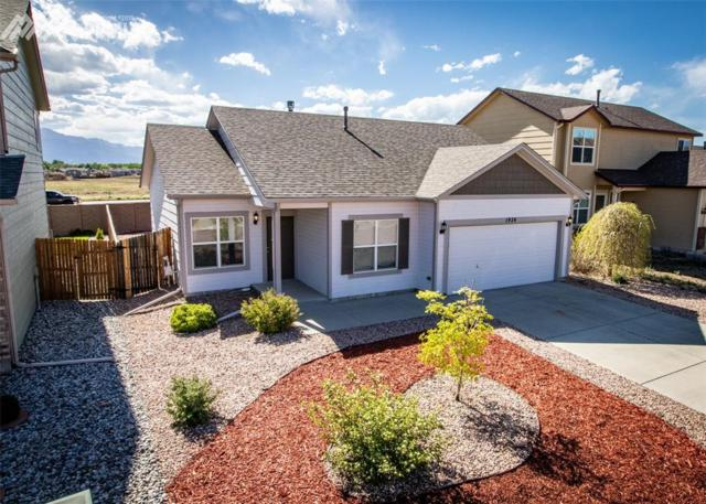 1924 Lillian Way, Colorado Springs, CO 80951 (#9160429) :: The Peak Properties Group
