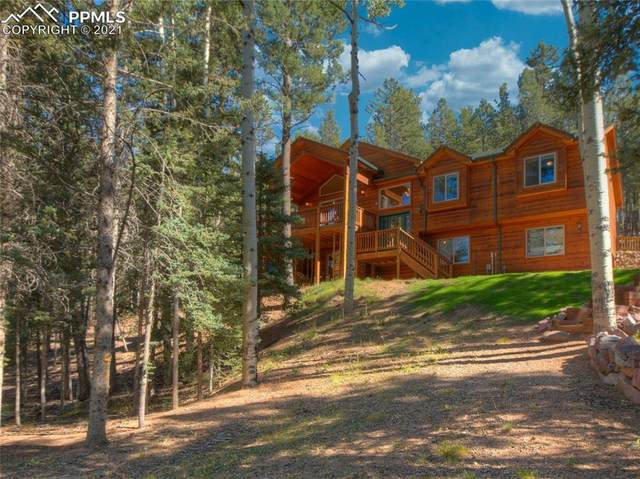 256 Winding Valley Drive, Woodland Park, CO 80863 (#9168601) :: The Treasure Davis Team   eXp Realty