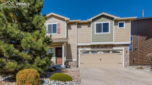 7004 Harrier Drive, Colorado Springs, CO 80922 (#9169155) :: 8z Real Estate