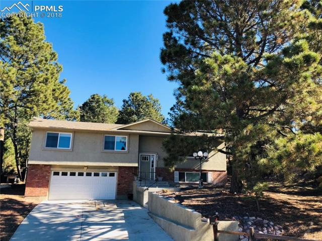 1727 Sanderson Avenue, Colorado Springs, CO 80915 (#9169548) :: Jason Daniels & Associates at RE/MAX Millennium