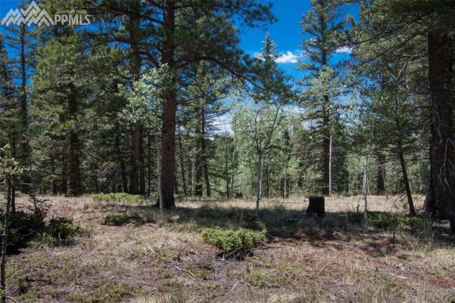 427 Black Bear Drive, Divide, CO 80814 (#9169799) :: 8z Real Estate
