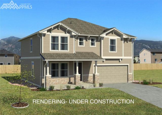 19444 Lindenmere Drive, Monument, CO 80132 (#9171956) :: 8z Real Estate