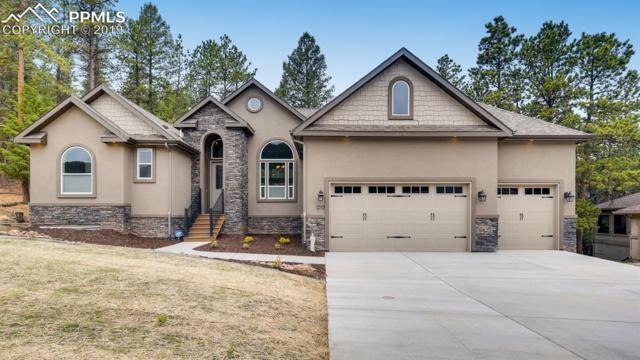1210 Cottontail Trail, Woodland Park, CO 80863 (#9175099) :: Fisk Team, RE/MAX Properties, Inc.