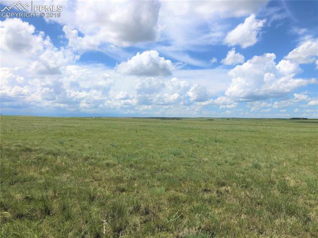 80 Acres Highway 94 Highway, Rush, CO 80833 (#9175722) :: Colorado Home Finder Realty