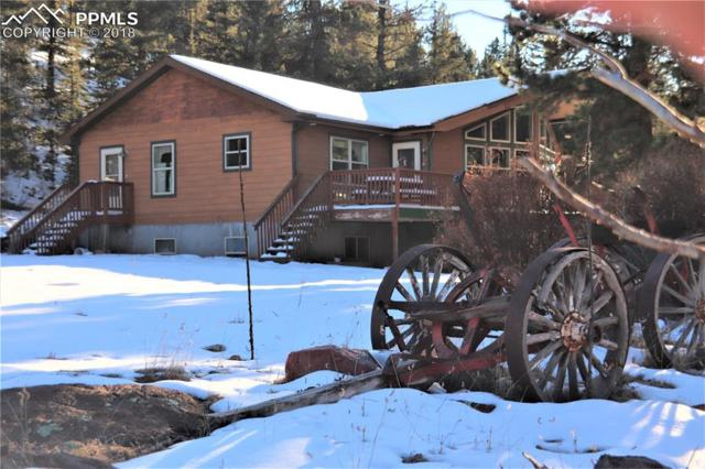 923 Nickel Plate, Cripple Creek, CO 80813 (#9177731) :: 8z Real Estate