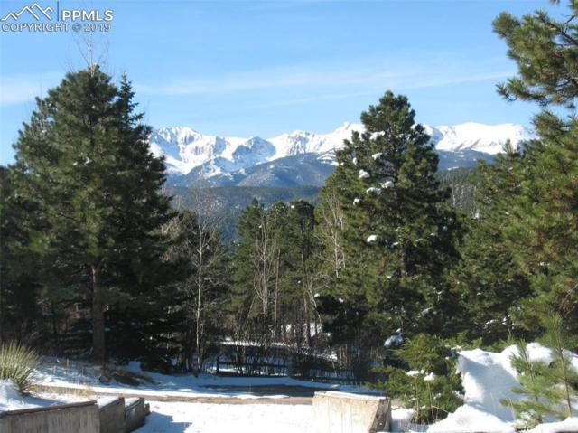 285 Morning Star Court, Woodland Park, CO 80863 (#9178212) :: Fisk Team, RE/MAX Properties, Inc.