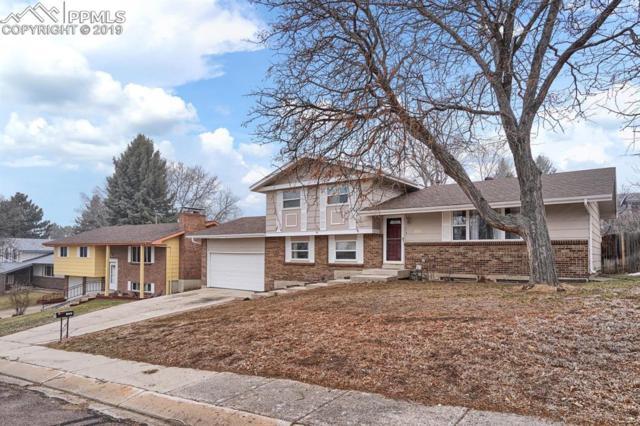 2630 Villa Loma Drive, Colorado Springs, CO 80917 (#9180492) :: Tommy Daly Home Team