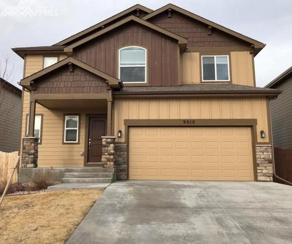 9910 Silver Stirrup Drive, Colorado Springs, CO 80925 (#9180587) :: 8z Real Estate