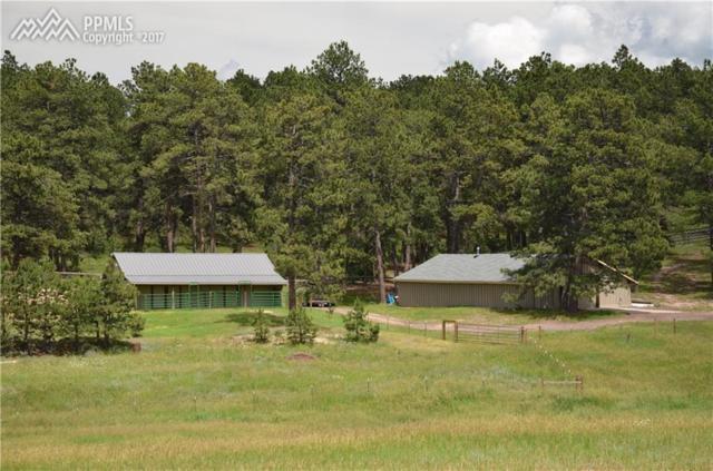 18150 Walker Court, Colorado Springs, CO 80908 (#9181172) :: 8z Real Estate