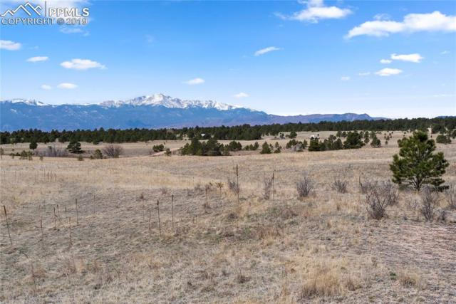 9118 Nature Refuge Way, Colorado Springs, CO 80908 (#9182182) :: Perfect Properties powered by HomeTrackR