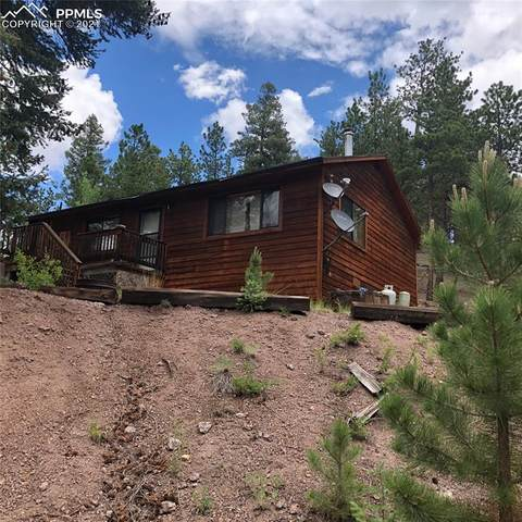4712 County Road 33, Woodland Park, CO 80863 (#9184245) :: Tommy Daly Home Team